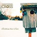 cross_2010_.jpg