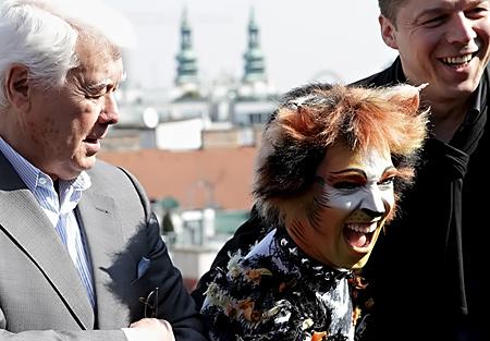 Cats Wien 2012